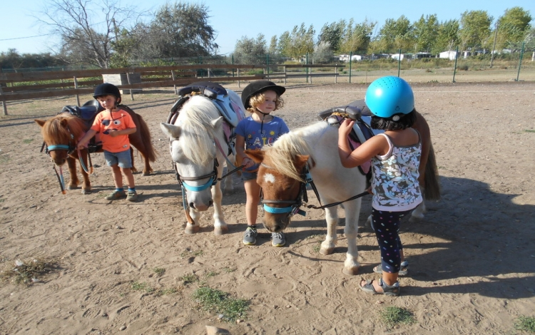 poney club de la colline