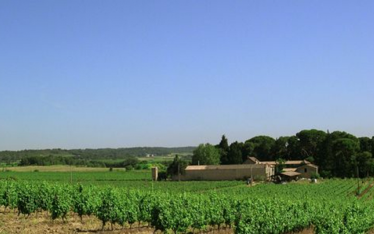 Domaine%20from%20plateau,     .